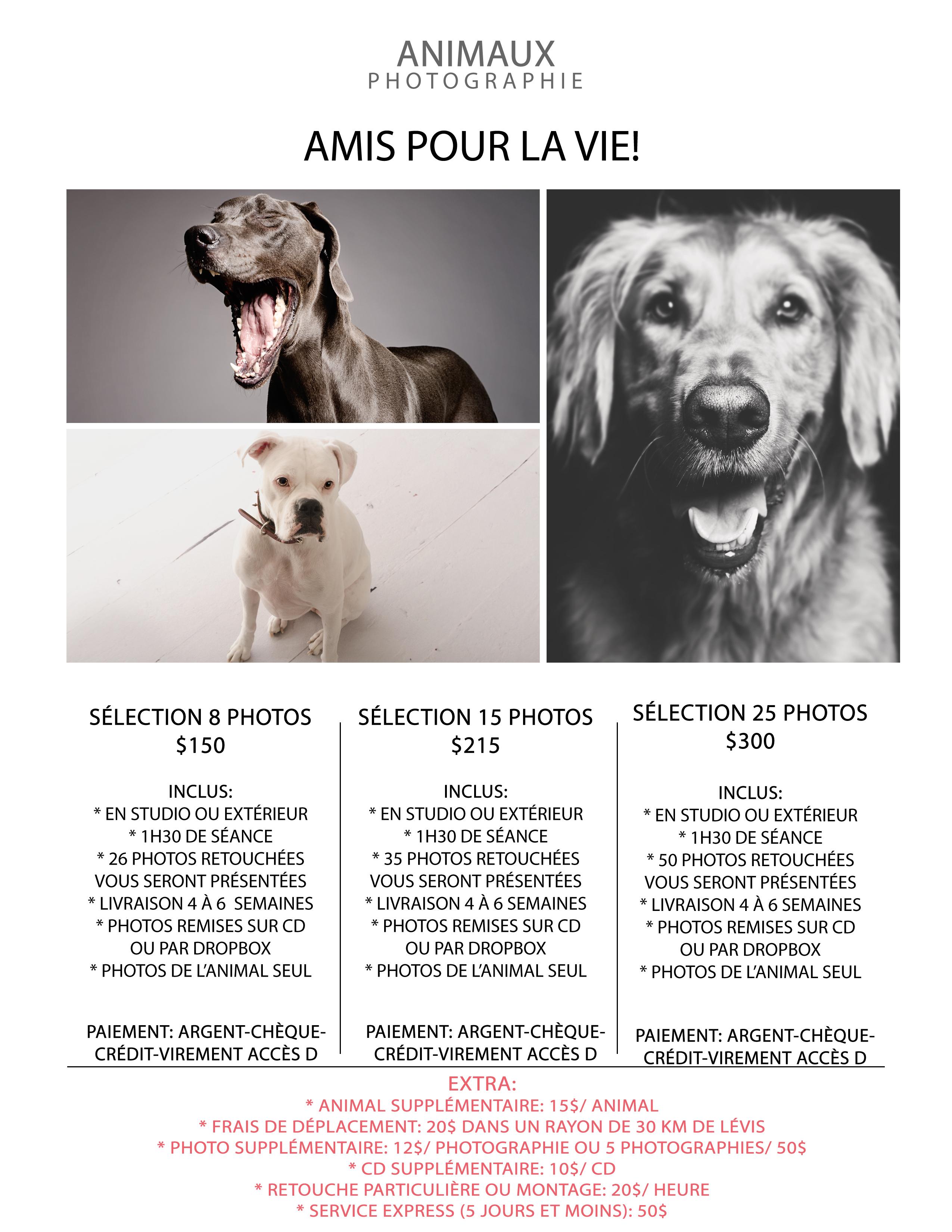 amis-pour-la-vie-2017